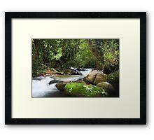Hoi River Framed Print