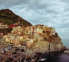 'Rooms with a View' - Manarolo,Cinque Terre, Italy by Martin Stringer