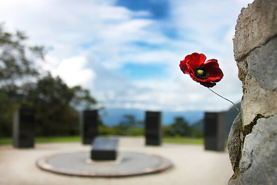 Poppy at Isurava Memorial  by BenClarkImagery