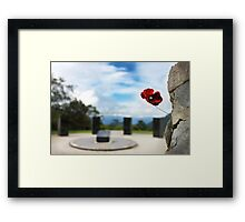 Poppy at Isurava Memorial  Framed Print
