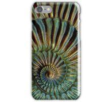 snake-stone iPhone Case/Skin