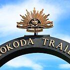 THE KOKODA TRAIL by BenClarkImagery