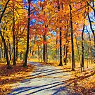My Fall Walk by JohnDSmith