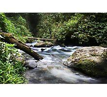 Flowing Vabuiagi River  Photographic Print
