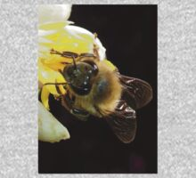 Honey Bee Pollinating Lemon Flower Close Up One Piece - Short Sleeve