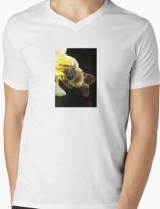 Honey Bee Pollinating Lemon Flower Close Up Mens V-Neck T-Shirt
