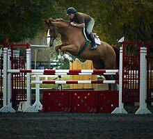 Jumper by Bevin Allison