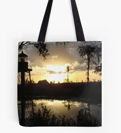 Econfina Creek Sunset, December 1, 2012 Tote Bag