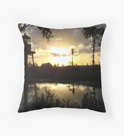 Econfina Creek Sunset, December 1, 2012 Throw Pillow