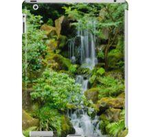 Peaceful Cascades iPad Case/Skin