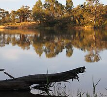 Refelctions on the Murray River by Carole-Anne