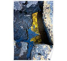 The Little  Middle PineTree Puddle Poster
