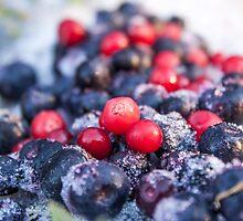 Frozen red lingonberries, vaccinium vitis-idaea and blue blueberries, vaccinium corymbosum by Daniel Rönneberg
