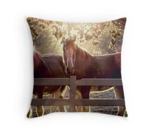 Early Morning Beauty (Views: 548) Throw Pillow