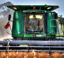 Harvest time by Leigh Monk