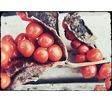 Seed Pods III Photographic Print