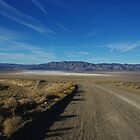 Road to salt flats and mountains, Nevada by Claudio Del Luongo