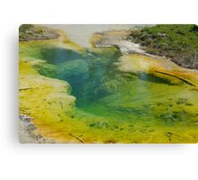 Thermal Pool, Yellowstone National Park, Wyoming Canvas Print