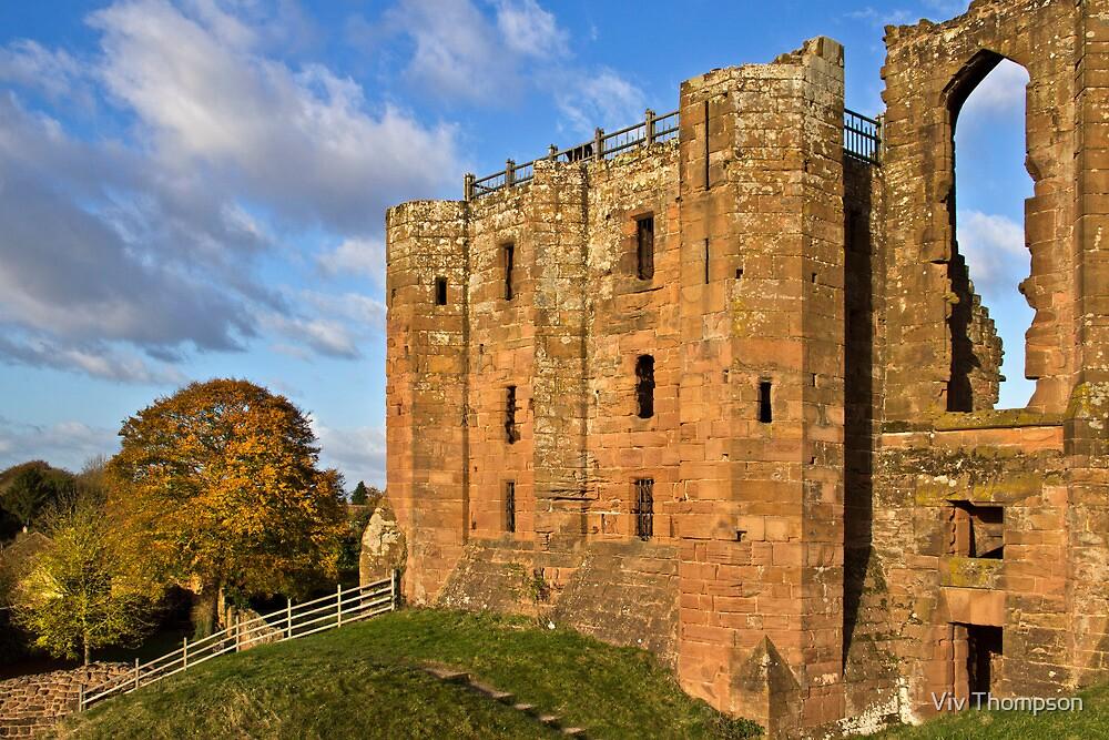 Kenilworth Castle, Warwickshire by vivsworld