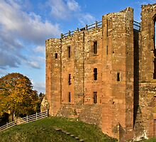 Kenilworth Castle, Warwickshire by vivsworld