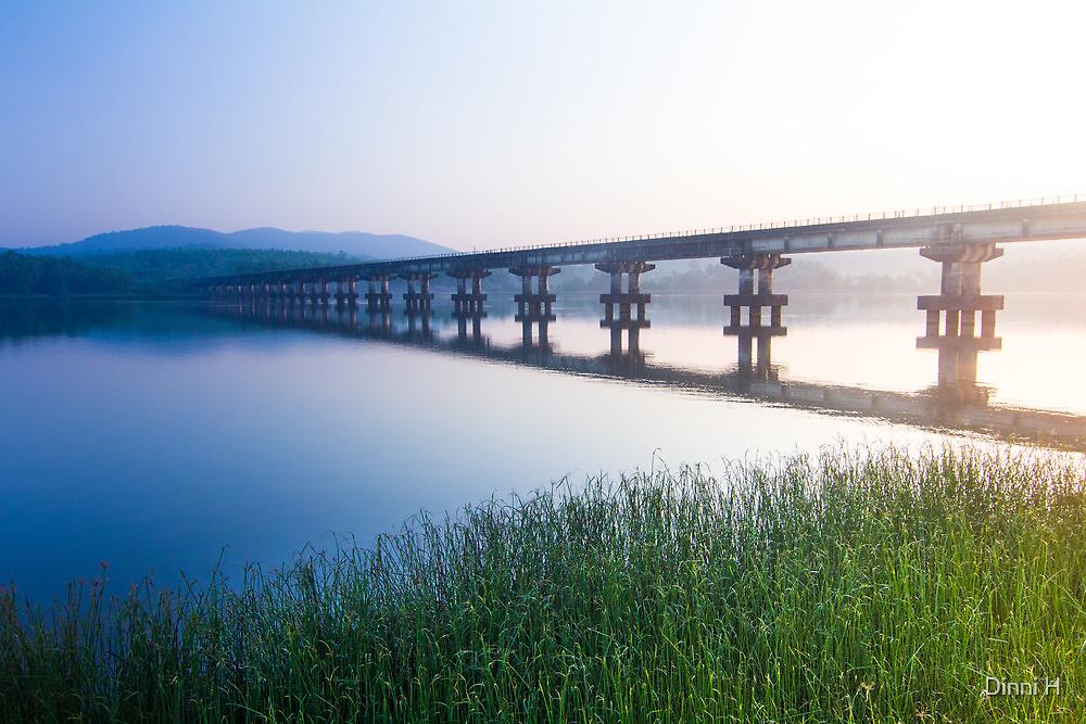 the train bridge by Dinni H