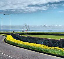 Coastal Road Lytham by Lilian Marshall