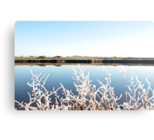frosty twigs in snow against cold blue sky and river Canvas Print