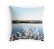 frosty twigs in snow against cold blue sky and river Throw Pillow