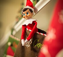 Elf on Our Shelf by Briar Richard