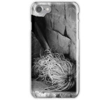 Cast Adrift iPhone Case/Skin