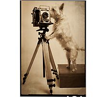 Vintage Pho Dog Grapher Photographic Print