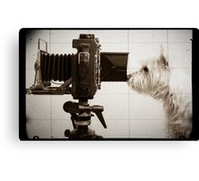 Vintage Pho Dog Grapher with View Camera Canvas Print