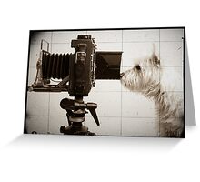 Vintage Pho Dog Grapher with View Camera Greeting Card