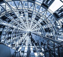 Toronto Skywalk 3 by John Velocci