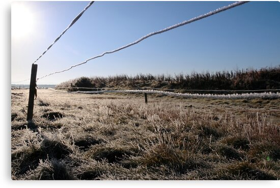ice coated wire fence in a farm field by morrbyte