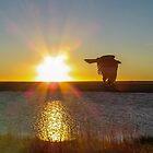 Dawn Flight by Linda Sparks