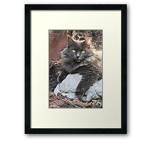 Zoë On The Rocks, Birthday Girl! Framed Print