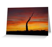 Utah sunset Greeting Card