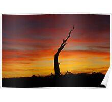 Utah sunset Poster