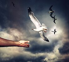 A Reach To Freedom by Kuzeytac