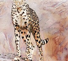 CHEETAH by Tammera