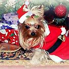 Santa's Littlest Helper by Grinch/R. Pross
