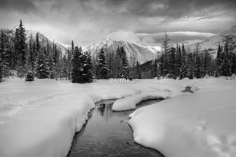 Winter land III by zumi