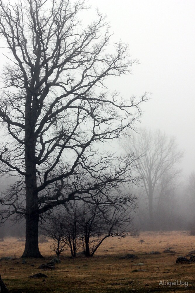 Oak Tree in a Misty Pasture by AbigailJoy