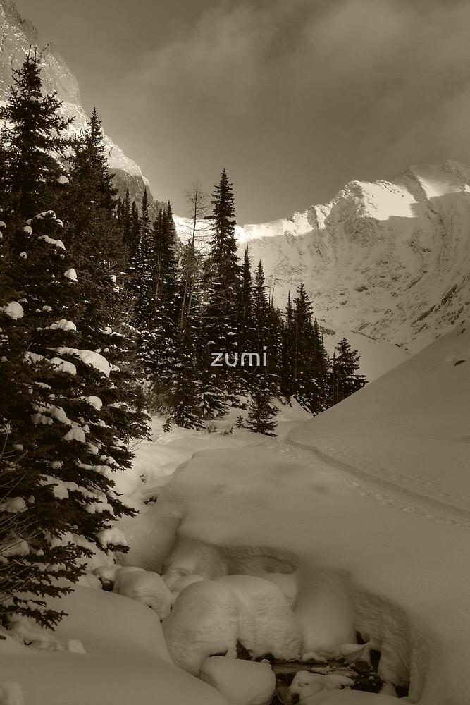 Deep snowy creek by zumi