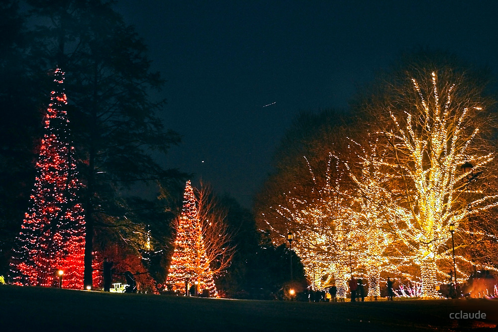 A Longwood Christmas by cclaude