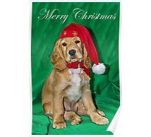 Bramble's Christmas Poster