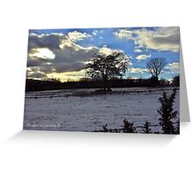 Winter Landscape, Cultra. Greeting Card