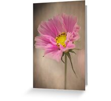 Gently Cosmos Greeting Card