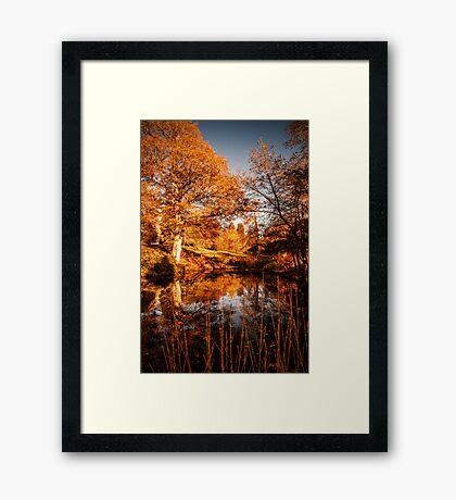 Autumnal View Framed Print